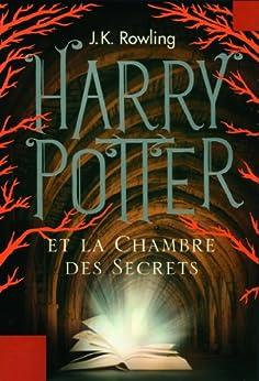 harry potter french ebook epub